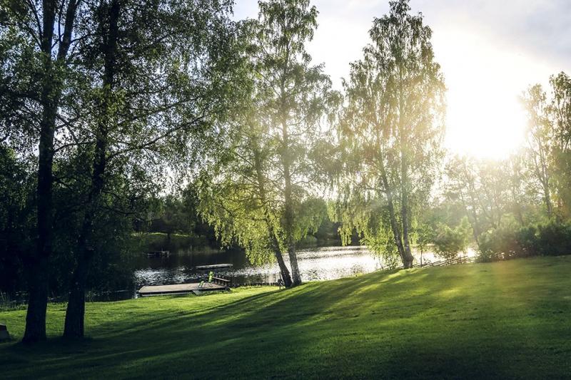 Snäcksjöns-islandshästar-Öregrund-IMG_6487
