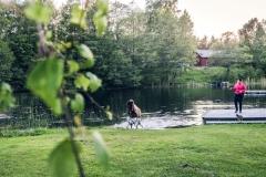 Snäcksjöns-islandshästar-Öregrund-IMG_6503