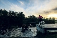 Snäcksjöns-islandshästar-Öregrund-IMG_6507