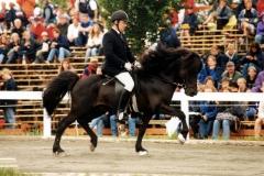 Kjarni-Hreggi VM 1999-fyrgångsuttaging2
